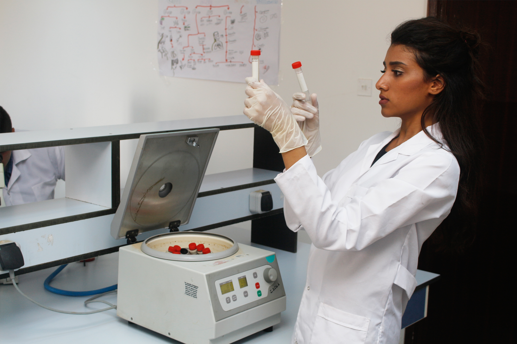 anatomy Pathology Microbiology Parasitology Biochemistry Biochemistry